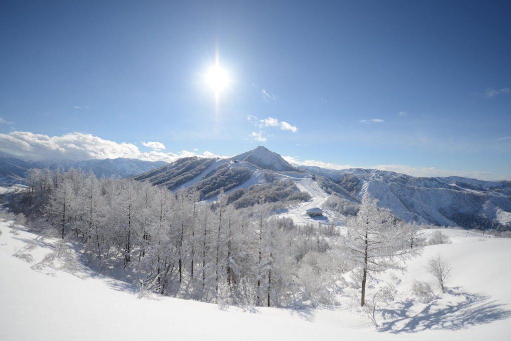 ski_01maiko